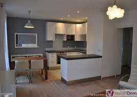 renovation appartement haussmannien cuisine dã co appartement interieur décoration d u0027appartement