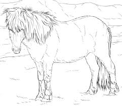 icelandic horse coloring free printable coloring pages