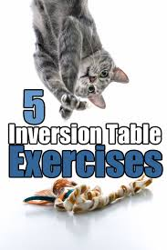 inversion table exercises for back 5 inversion table exercises