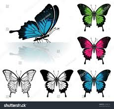 collect many colored butterfly mirror reflection stock vector