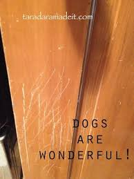 best 25 fix scratched wood ideas on repair scratched