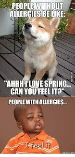 Skeptical Kid Meme - black kid allergy memes memes pics 2018