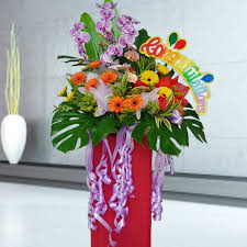 congratulations flowers singapore congratulations flowers congratulation flower arrangement