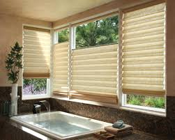 Bathroom Window Blinds Ideas Ideas For Bathroom Window Blinds Photogiraffe Me