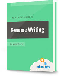 resume writing executive resume writing 2 what makes you so special blue sky