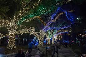 Zoo Of Lights Houston by Zoo Lights