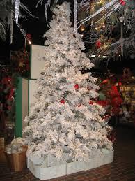 cardinal tree place