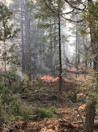 Wildfire Arizona Golf by Firefighters Battling Wildfire Near Show Low Lake Latest News