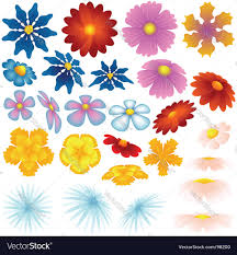 spring flowers royalty free vector image vectorstock