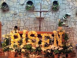 Easter Decorations For Church Sanctuary by 62 Best Altar Deco Images On Pinterest Church Ideas Worship