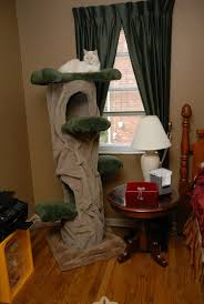 what s involved in assembling the hollow cat tree