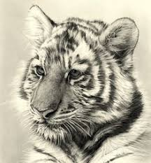 45 best sanat art images on pinterest drawings drawing sketches