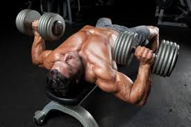 How To Bench More Weight How To Do The Dumbbell Bench Press Muscle U0026 Performance