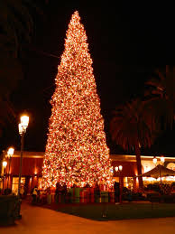 Home Compre Decor Design Online Images Of Geo Mesh Christmas Tree Home Design Ideas Garland Ribbon