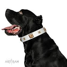 Comfortable Dog Collar Dog In White Fdt Artisan White Leather Dog Collar Adorned With