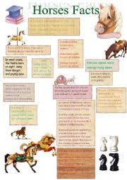 english worksheet facts about horses 14 08 08 camp fun or