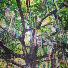 mardi gras trees weekend reads 2015 edition v4 musings of ms x