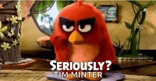 Angry Bird Meme - angry bird meme gifs tenor