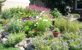 Westwood Flower Garden - creative of flower gardening 101 gardening 101 container gardening
