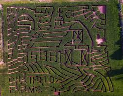 Denver Botanic Gardens Corn Maze Roxborough Living Dbg Chatfield Corn Maze Pumpkin Festival