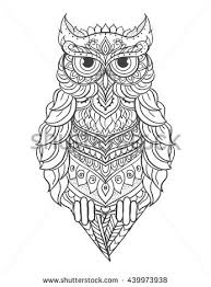 owl drawing stock images royalty free images vectors