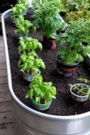 Vegetable Container Garden - download vegetable garden container ideas solidaria garden