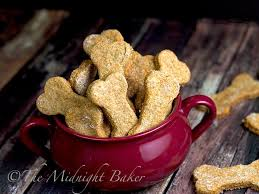 funny thanksgiving dog pictures 5 yogurt dog treat recipes to spoil your pet healthy rover com