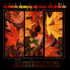 thanksgiving cards thanksgiving fall season cards autumn season