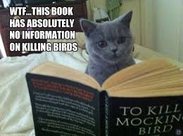 To Kill A Mockingbird Meme - i can has cheezburger to kill a mockingbird funny animals