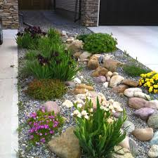Japanese Rock Garden Plants 156 Best Plants Zone 3 Images On Pinterest Decks Flower Boxes