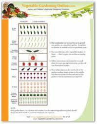 4093 best vegetable garden images on pinterest gardening veggie