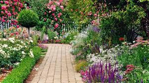 imagenes flores bellisimas jardineria 5 flores de primavera bellísimas