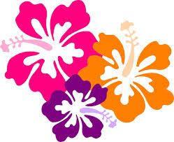 Printable Hawaiian Decorations 22 Best Hawaiian Props Images On Pinterest Drawings Hibiscus