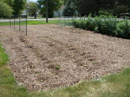 back to eden method of mulch u2022 helpfulgardener com