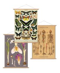 cavallini file folders cavallini and co decorative wrap vintage poster kit vertical