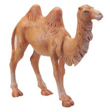 5 inch scale standing camel by fontanini fontaninistore com