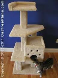 Free Diy Cat Furniture Plans by The 25 Best Cat Tower Plans Ideas On Pinterest Cat Trees Diy
