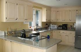 Cheap Kitchen Cabinets Houston Fabulous Cheap Kitchen Cabinets Sale Tags Buy Kitchen Cabinets