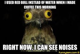 I Can See Sounds Meme - i used red bull instead of water when i made coffee this morning