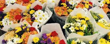 whole sale flowers binienda wholesale florist home