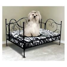 Dog Chaise Living Room Brilliant Chaise Lounge Luxury Dog Bed Pet Decor Ultra