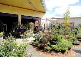danger garden a gas station nursery in spokane wa u2026