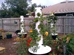 don u0027t do this in your tower garden my big mistake youtube