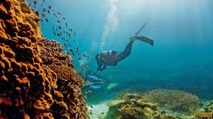 Great Barrier Reef Map Guide To Great Barrier Reef Tourism Australia