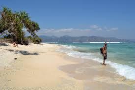a week in paradise makes your mind mushy hannah and joe u0027s big