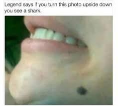 Meme Smile - 22 wholesome memes that ll make you smile memebase funny memes