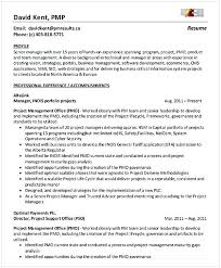project manager resume non profit program director resume entry level project management