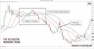 chart pattern trading system trading the alligator by bill williams trading setups review