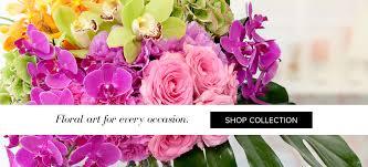 el cajon florist flower delivery by wild orchid florist