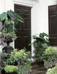 138 best container gardens spring summer images on pinterest